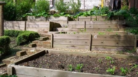 17 images about terrace vegetable garden on pinterest for Terrace vegetable garden ideas