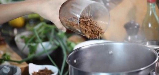 Im not ready for this insects-for-food Kickstarter campaign