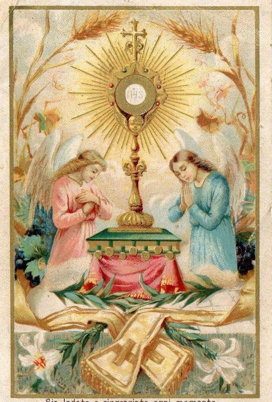 Alma de Cristo. Santificame Cuerpo de Cristo.. Salvame Sangre de cristo.  Embriagame Agua del costado de Cristo..Lavame Pasion de Cristo..Confortame