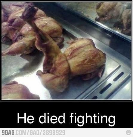 """LMAO. The Bravest """"Dead"""" Chicken of all time.Chicken, Laugh, Funny Pictures, Die Fight, Kung Fu, Funny Stuff, Humor, Food Fight, Chuck Norris"""