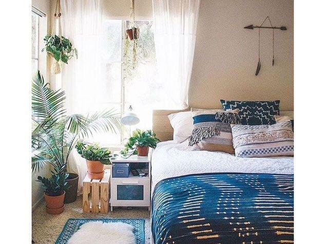 Oltre 25 fantastiche idee su piante della camera da letto - Piante da camera da letto ...