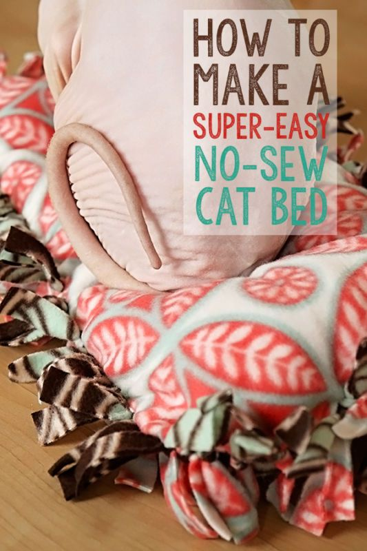 How To Make A Super Easy No Sew Cat Bed Diy For Cats Pinterest Pets And Toys