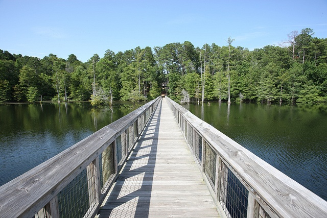 Lake D'Arbonne State Park in Farmerville, Louisiana. Discover more at www.discoveramerica.com.    Phototgraphy of Louisiana Tourism