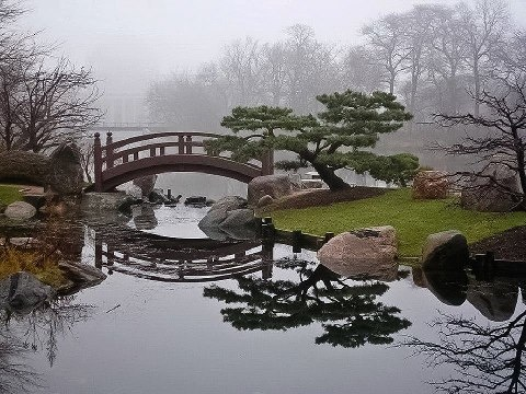 So peaceful, lovely bridge, the trees look ordered, but quite natural too!