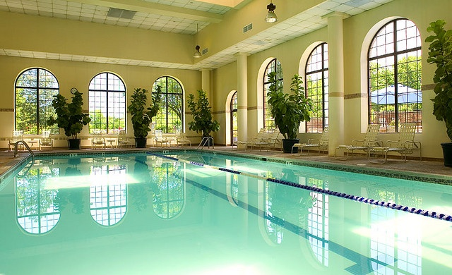 22 Best Indoor Pool Greenhouse Images On Pinterest