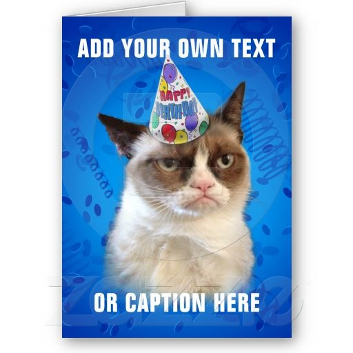 Grumpy Cat Customizable Happy Birthday Greeting Cards