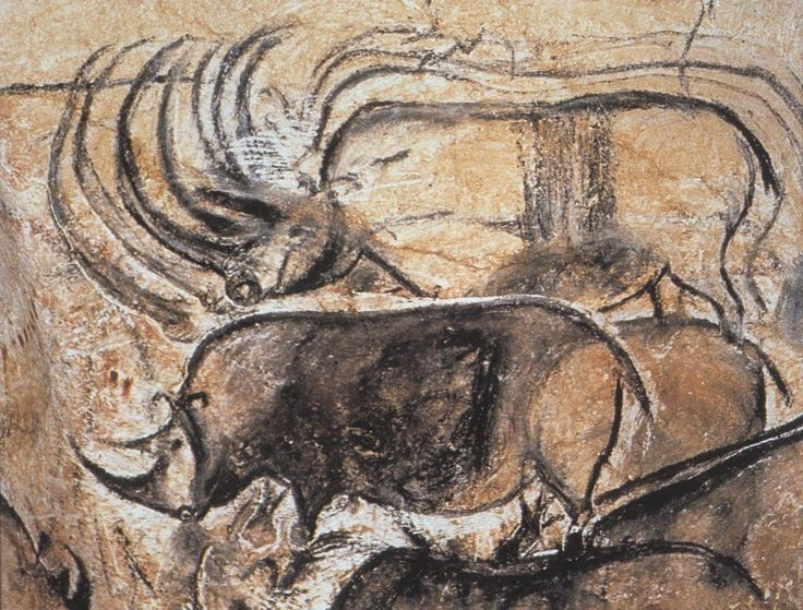 Rhinoceroses from Chauvet Cave, c. 30,000 BCE