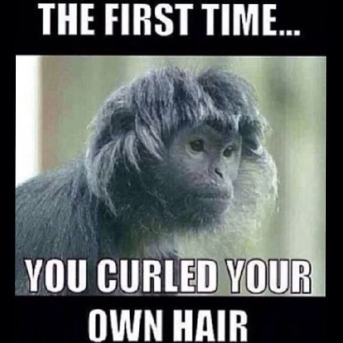 OMG this is hilarious!!!! (Are you on Tumblr? Me toooo :) http://thestylishnaturalista.tumblr.com) Natural hair, humor