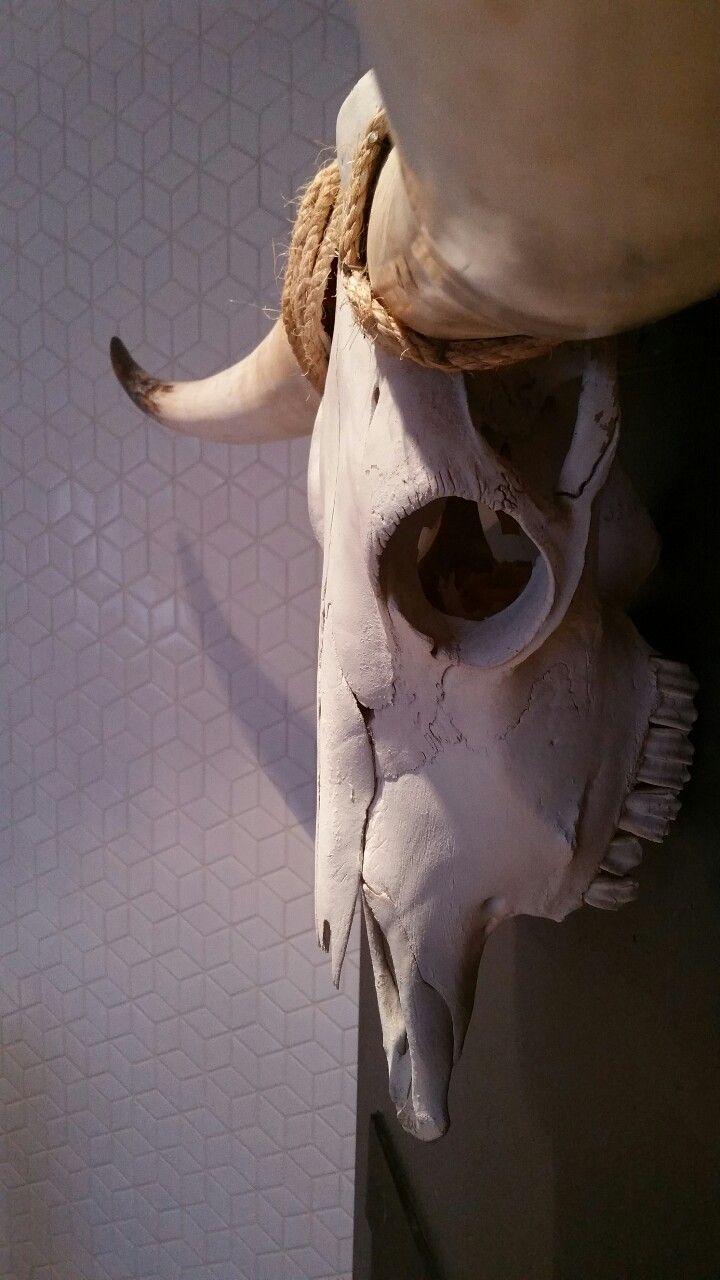 - Bones & Tiles -