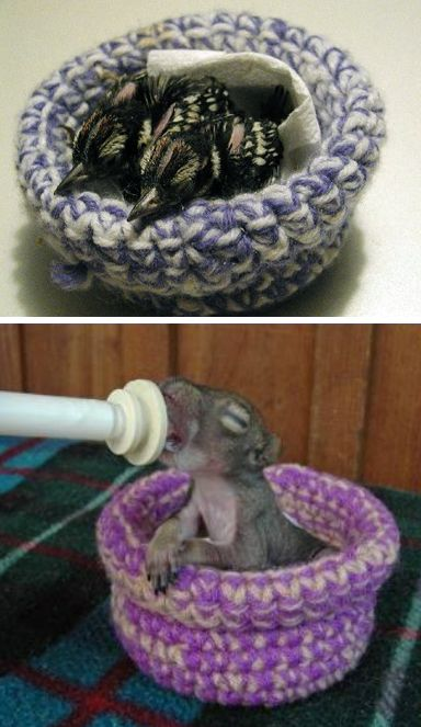 Knit Nests for Rescue Birds and Animals - What better use for your leftover yarn stash than to keep orphaned birds and small animals warm and safe! Knitting for Charity published a call for nests from Second Chance Wildlife Rescue along with links to patterns for knit and crochet knits.