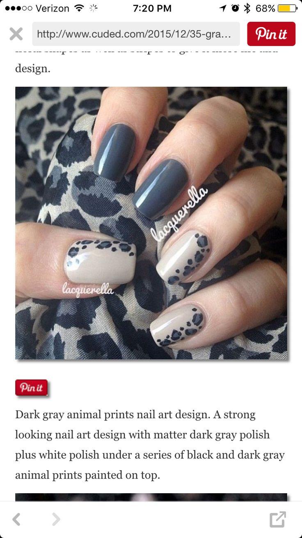 Grey animal