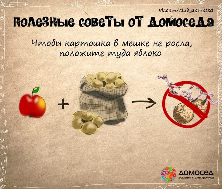 Чтобы картошка в мешке не проросла