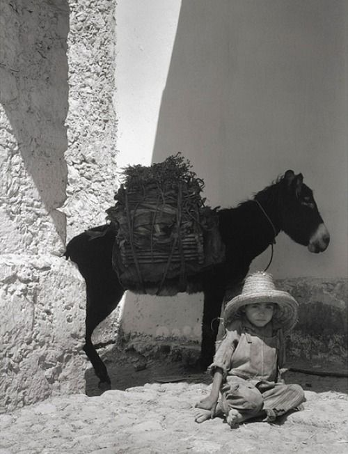 Paul Strand, Boy and Donkey, 1933
