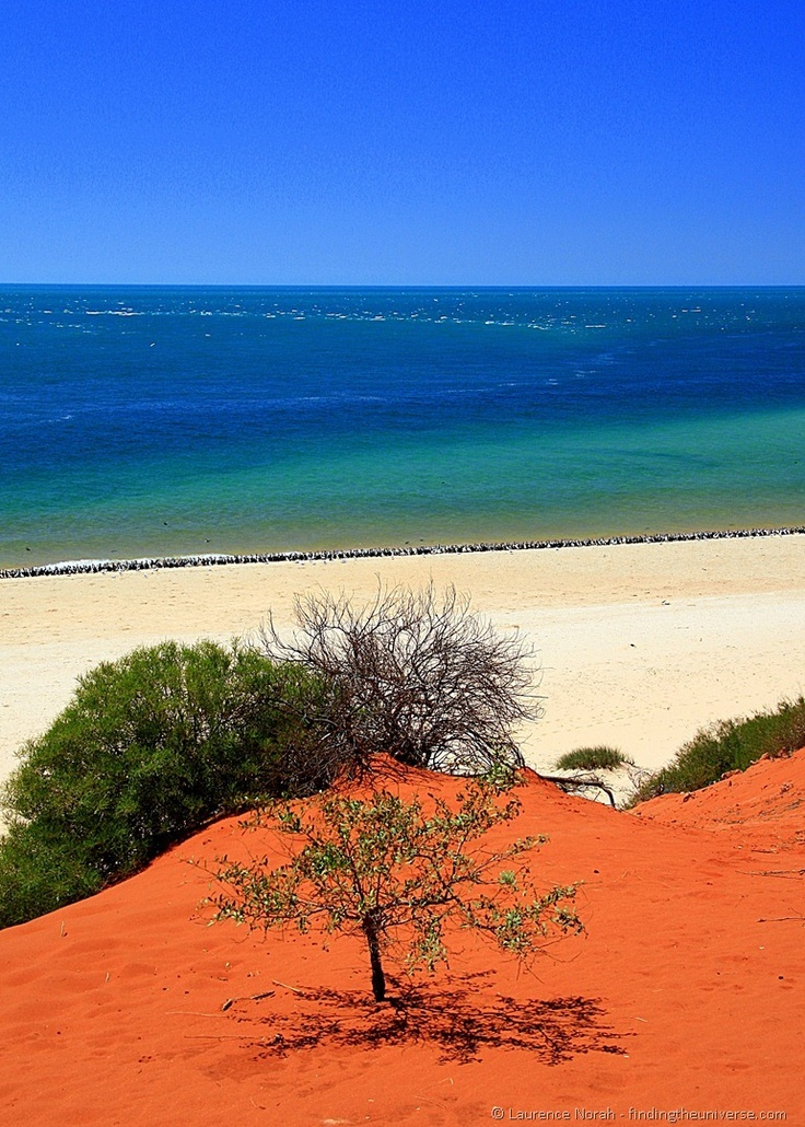 Australian west coast, where the red outback literally meets the sea in the world heritage listed Francois Peron National Park.