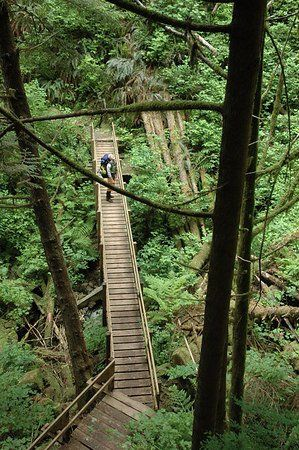 West Coast Trail- hike carefully and slowly, it is tough, long, muddy and dangerous in some places, but a memorable experience.