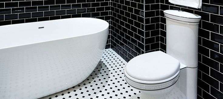 lifestyle 6 Bathroom Bizarre