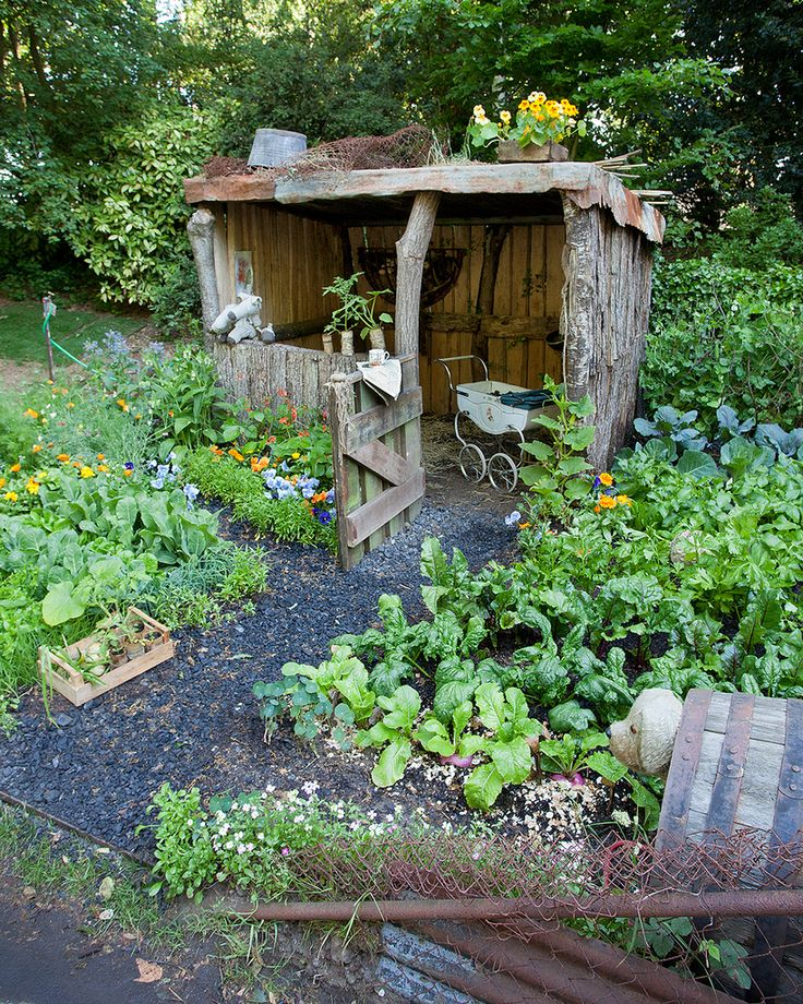 Small storage shed for keeping gardening tools