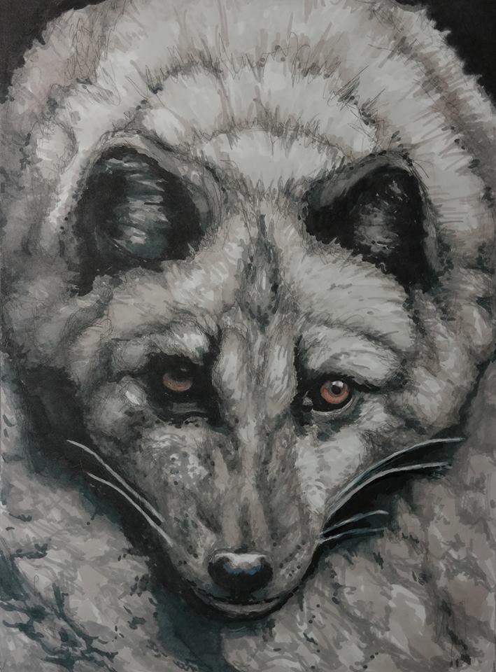 Pro-marker illustration of Arctic Fox.
