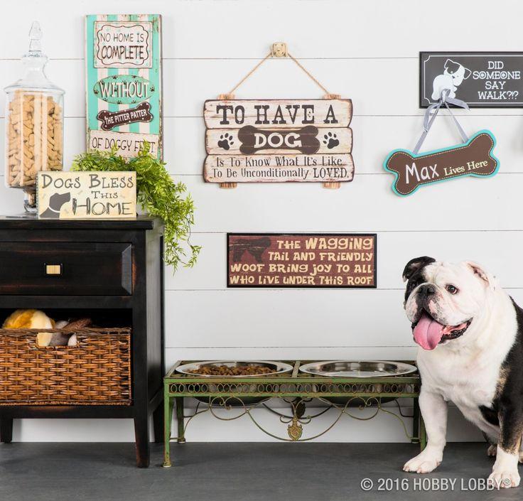 1000 Images About Ideas Pet Decor On Pinterest: 1000+ Images About Home Decor On Pinterest