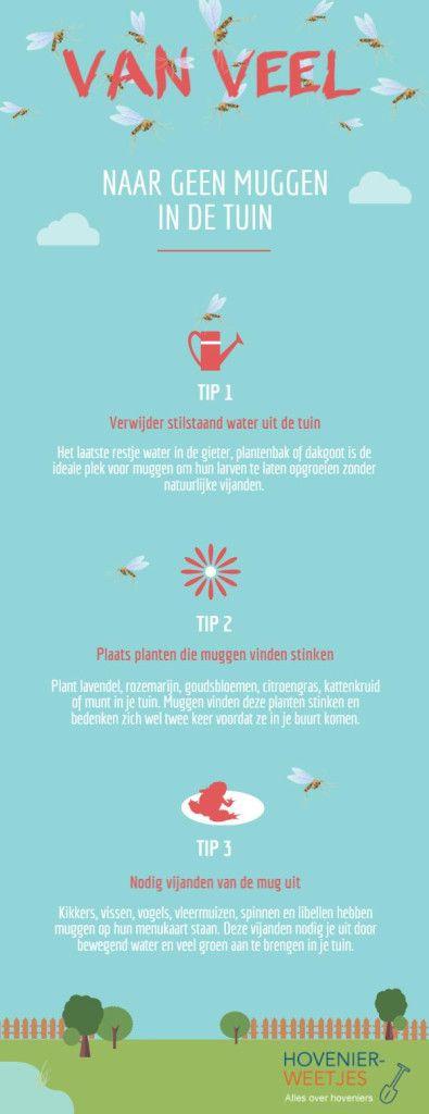 tips tegen de muggen in je huis en tuin