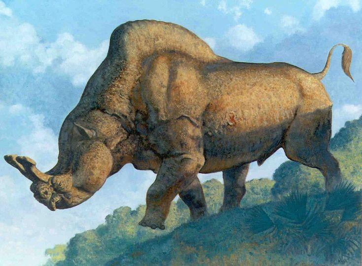 Norton Titanothere. Eocene, Oligocene. | Irresistable ...