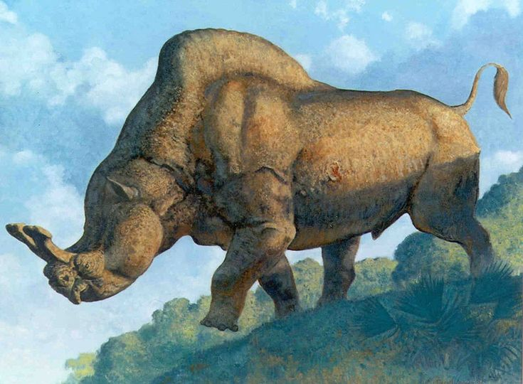 1000 images about prehistoric creatures on pinterest