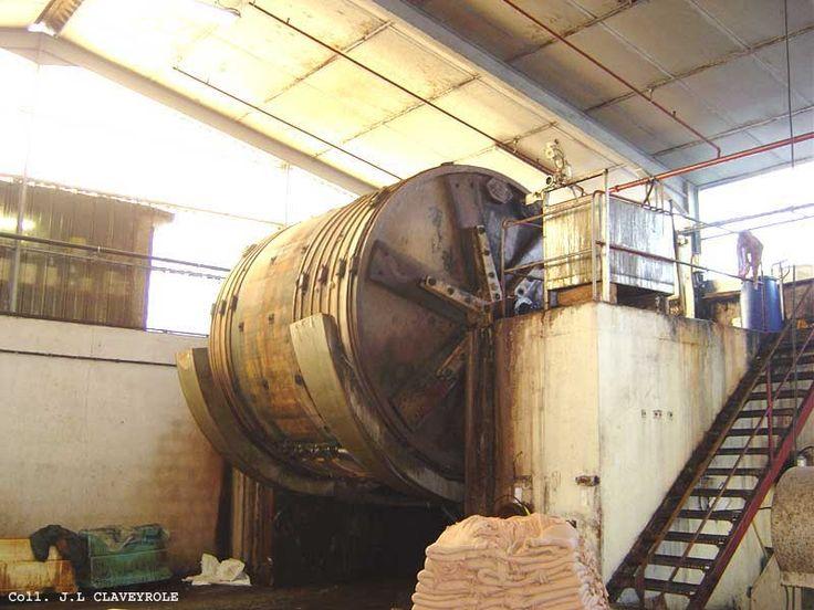 Inside the tannary