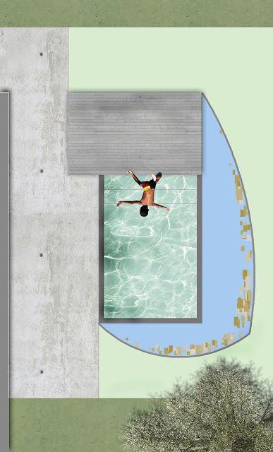 progetti forme progettazione piscine biologiche biopiscine e biopools