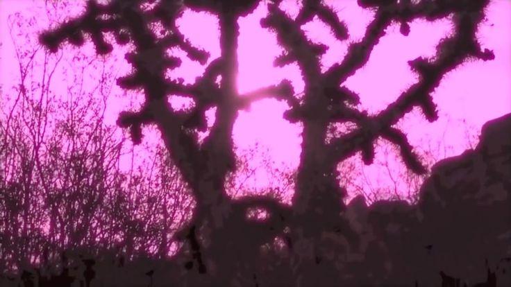 Tijuana Cartel - Lost My Head 2015 First Single from Album 'Psychedelicatessen'