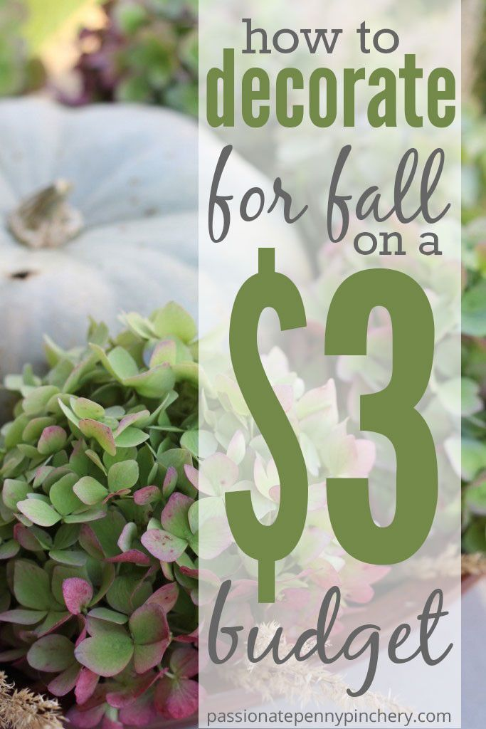 How To Decorate For Fall {On A $3 Budget}