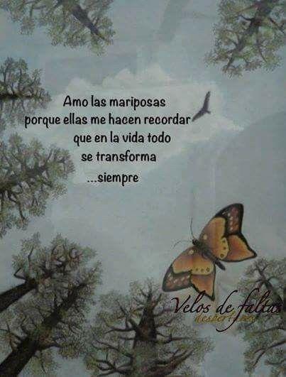 Amo las mariposas...