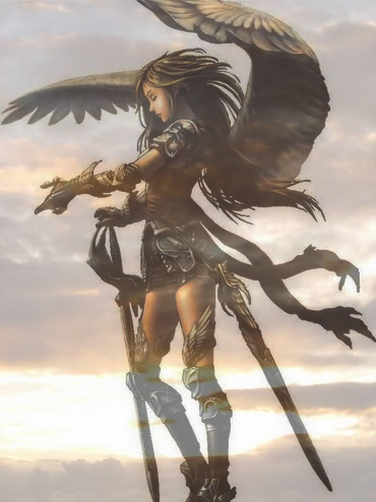Warrior Angel | Warrior Angel Anime Image