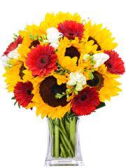 SUMMER - rozvoz květin