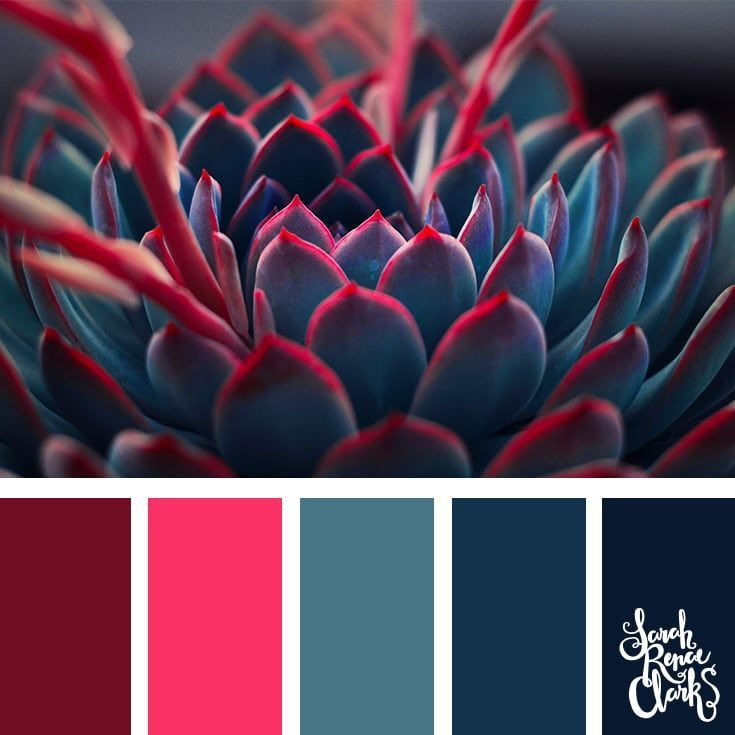 25 Color Palettes Inspired by Pantone Spring/Summe…