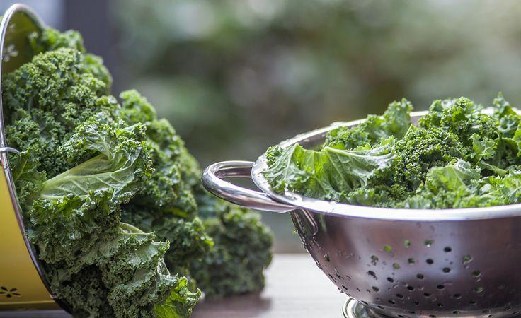 Grünkohl gilt als eine der besten Quellen für Carotinoide, Flavonoide und Omega-3-Fettsäuren – natürliche Wirkstoffe, die chronischen Entzündungen, Krebs und Herz-Kreislauf-Erkrankungen entgegenwirken sollen.