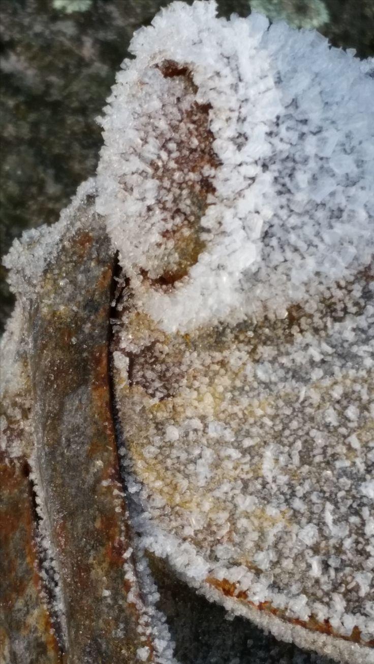 Rusty frozen frog