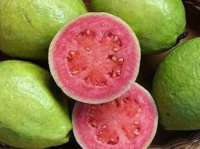 Goyave, fruit du goyavier