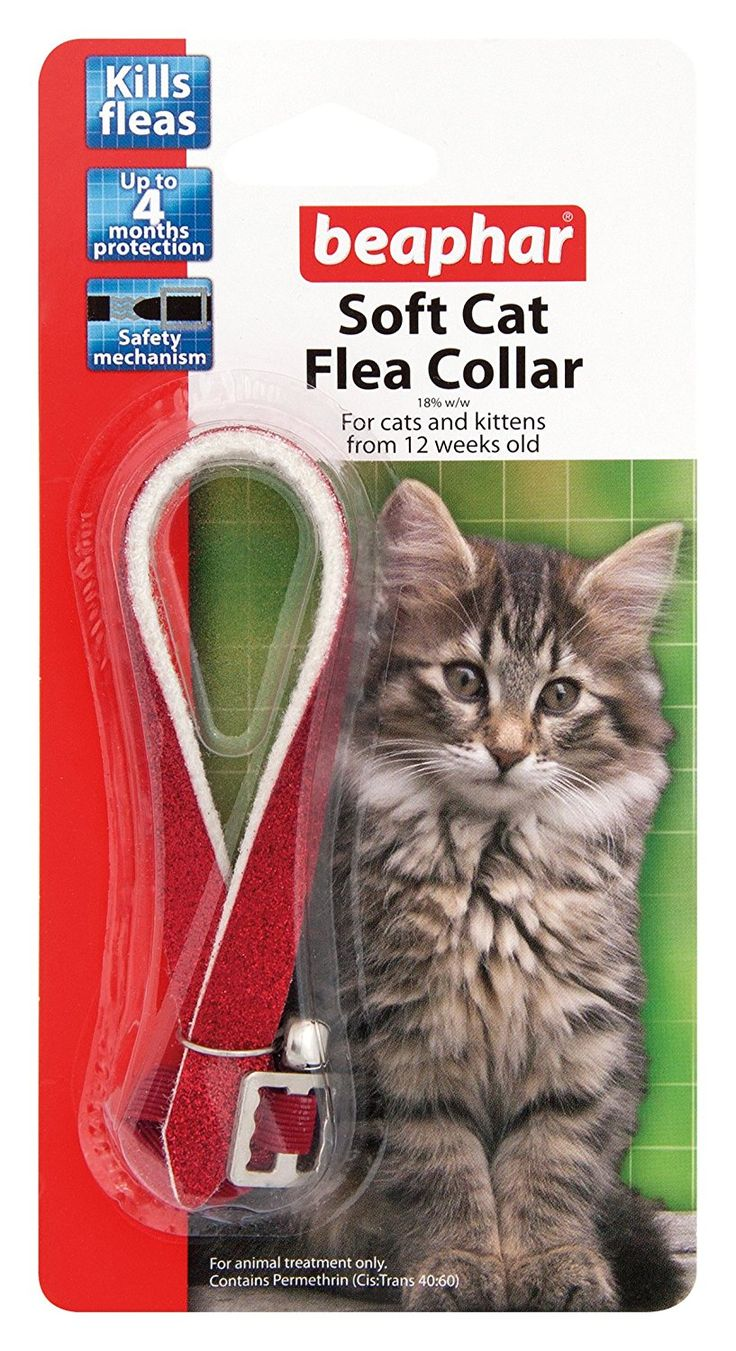 Beaphar Cat Flea Collar Red Glitter - Valentina Valentti UK [Misc.] *** You can find more details by visiting the image link.