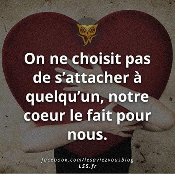 L'amour ne se commande pas. Il et, tout simplement. #citation #amour #coeur #destin