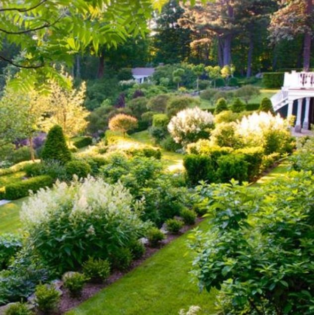 Formal Garden Design Idea: 305 Best Formal Landscaping Ideas Images On Pinterest