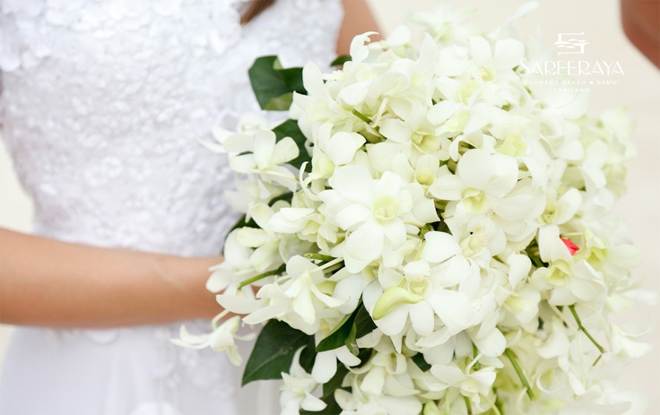 A Simple and Elegant Bouquet of White Orchids.