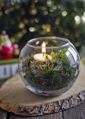 we love the idea of a single tea light in moss terrarium | see more winter wedding themes for your tablescapes here: http://www.mywedding.com/articles/5-winter-wedding-themes-for-your-tablescapes/