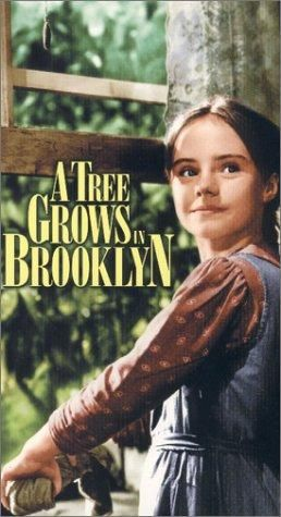 a tree grows in brooklyn essay themes