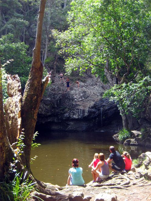 Best Swimming Holes in South East Queesland - Kondalilla Falls Hike & Swimming Hole