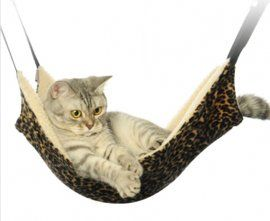 Zorvo Cat Hammock Animal Hanging Bed Cat Cage Comfortable Little Pet *** Want additional info? Click on the image. (This is an affiliate link and I receive a commission for the sales)