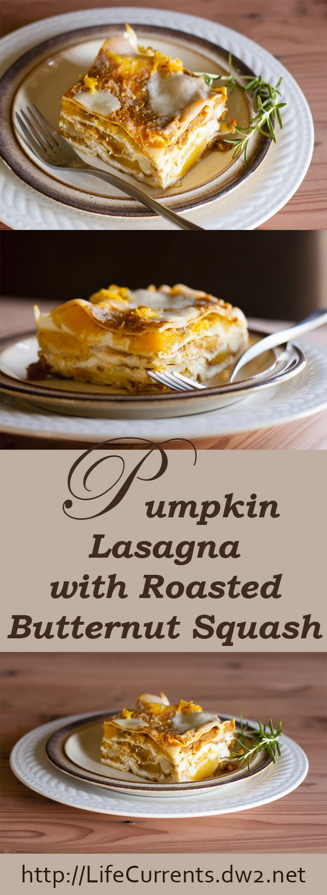 Pumpkin lasagna with roasted butternut squash, ricotta, and fresh mozzarella: a slice of Autumn by Life Currents! You've gotta try this one!
