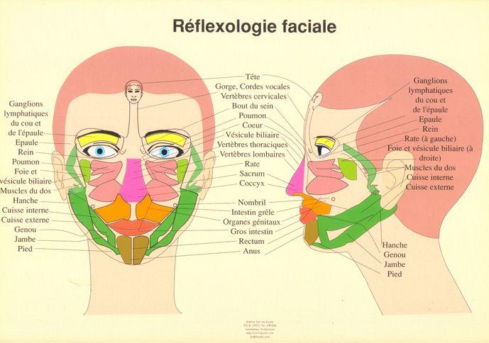 reflexologie - Recherche Google