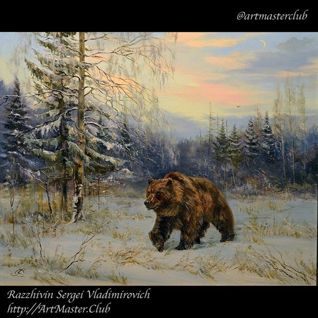 Bear in winter forest 40x50 painted in oil on canvas by Razzhivin Sergei  #draw #drawing #oilpainting #oilpaint #painting #paint #art #artwork #artist #picture #bear #artoftheday #artgallery #artmasterclub #classicart #classicpainting #winter #искусство #медведь #живопись #художник #зима #рисунок #картина #картинамаслом #рисую #разживин #animals #nature #forest