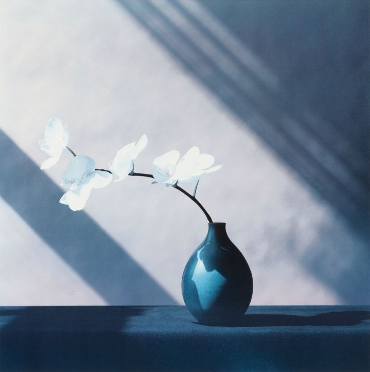 ROBERT MAPPLETHORPE (American, 1946-1989). Untitled (Group of Six Flowers), 1988.