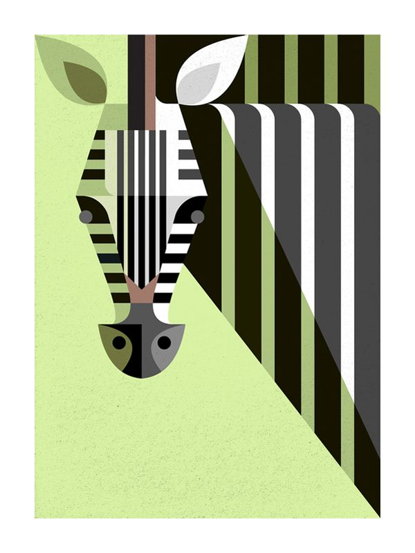 Zebra Portrait by Josh Brill
